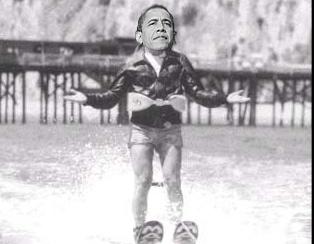 obamashark
